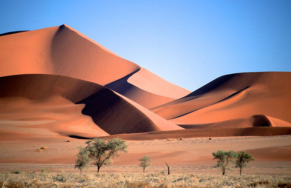Namib_Naukluft_National_Park_029